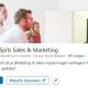LinkedIN bedrijfspagina volgers inzicht voorbeeld
